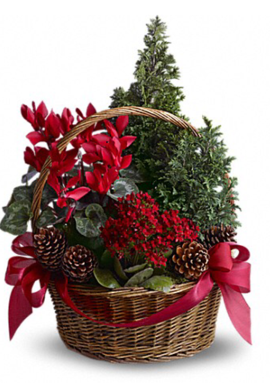 Christina 39 S Flower Shop Christmas Tree Basket