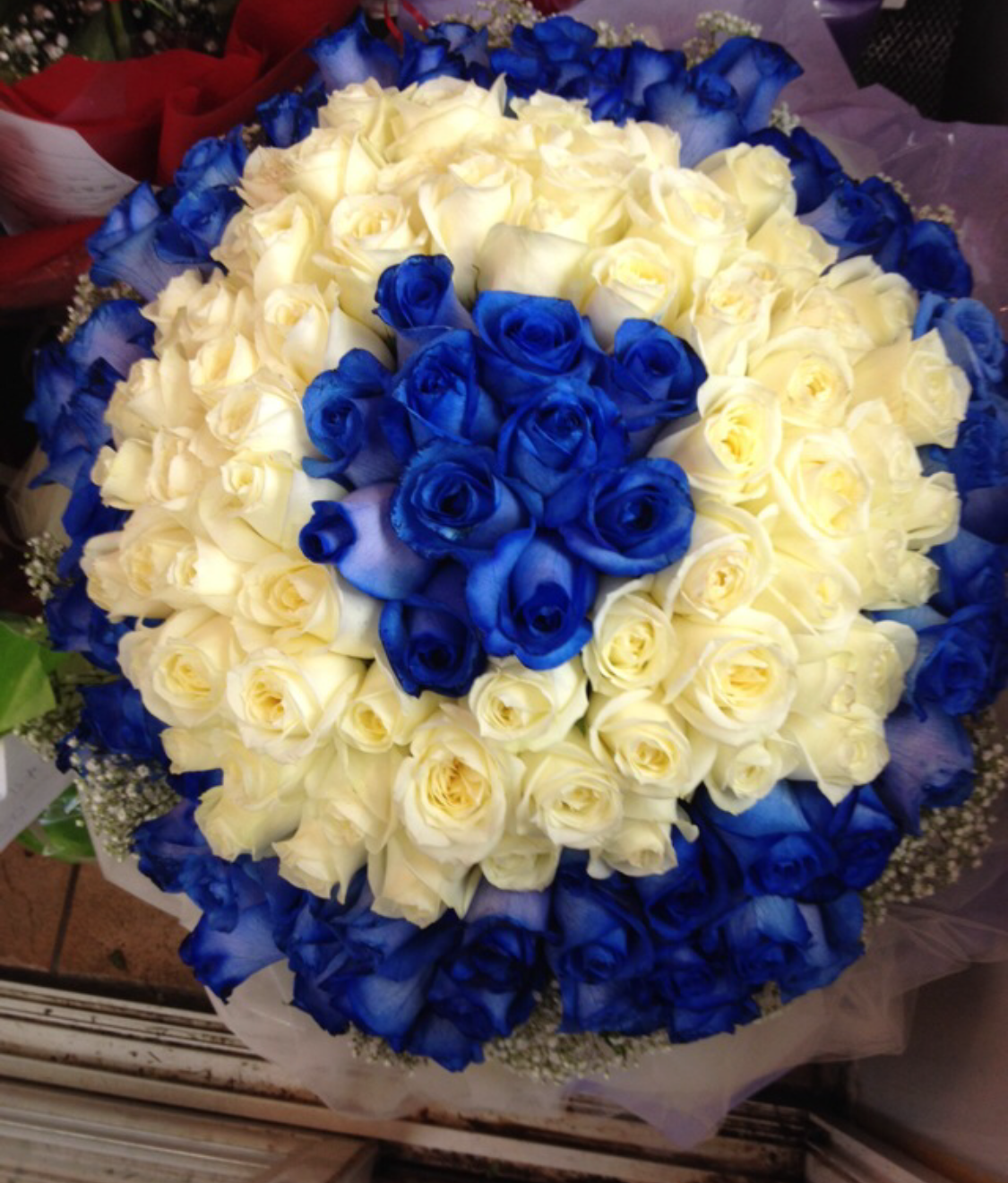 99 Blue and White Roses in Fancy Wrapping